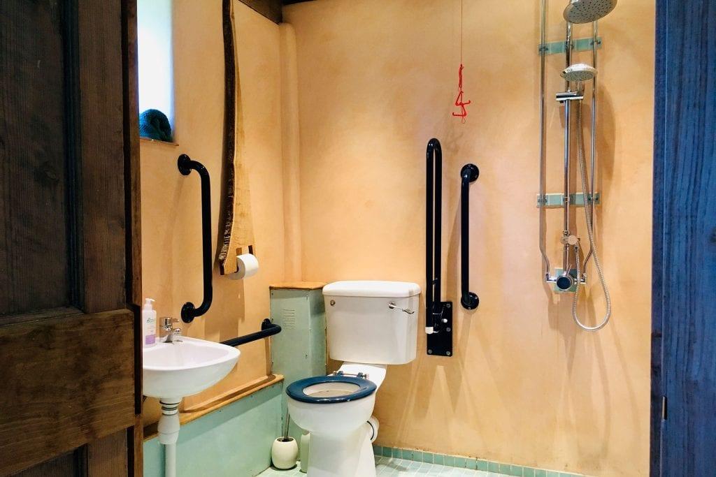 Downstairs en-suite wet room